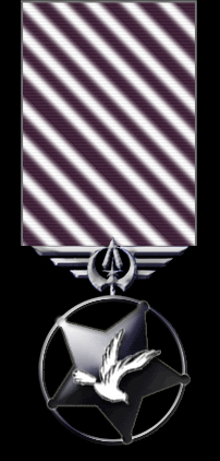 Medal-of-Honor.png